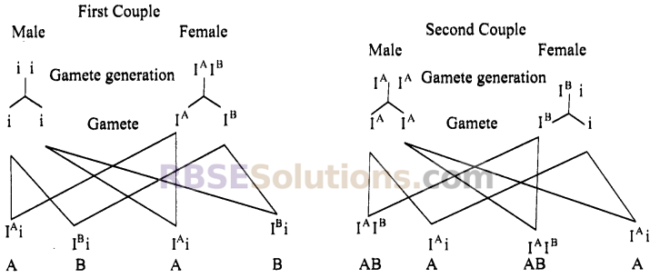 RBSE Solutions For Class 10 Science Chapter 4 Immunity And Blood Groups