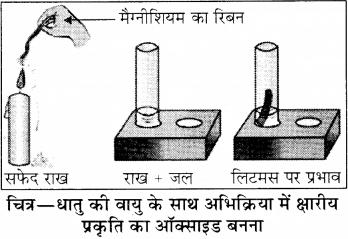 Dhatu Adhatu Class 8 RBSE Solutions Chapter 2