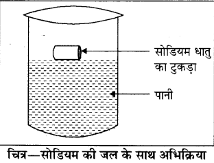 Dhatu Adhatu Class 8 Notes RBSE Solutions Chapter 2