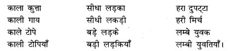 Vakya Shuddhikaran Class 10 RBSE