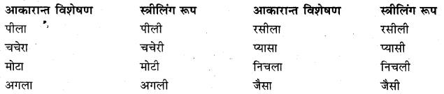 Visheshan Shabd In Hindi RBSE Class 10