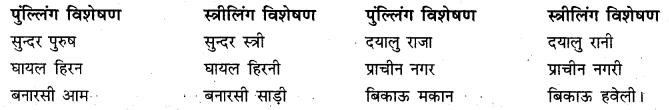 10 Visheshan Shabd RBSE