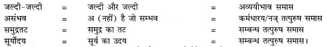 हिंदी पास बुक 10th क्लास RBSE ch 2