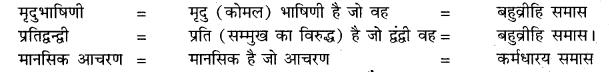 RBSE Hindi Solution Class 10