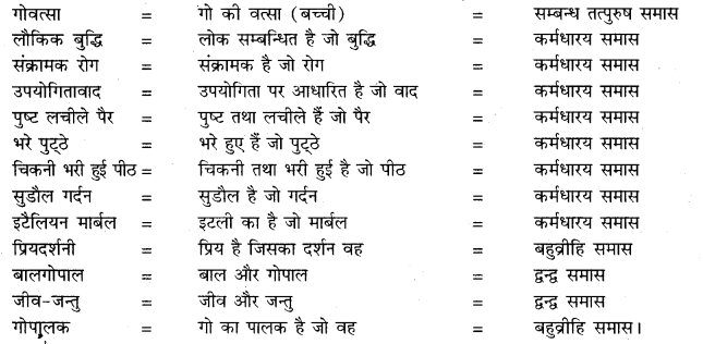 Class 10 RBSE Hindi Solution ch 2