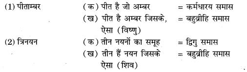 RBSE Class 10 Hindi Book
