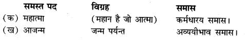 Samas Vigraha Examples In Hindi