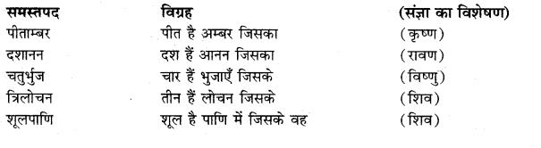 Dharmatma Samas Vigrah