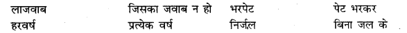Samas In Hindi Class 10