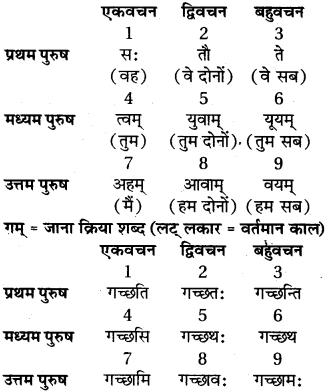 संस्कृत अनुवाद RBSE Class 6
