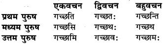 Vartate Dhatu Roop RBSE Class 6