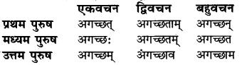 Lakar In Sanskrit RBSE Class 6