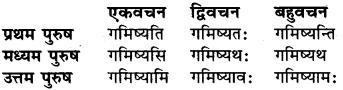 Vas Dhatu Roop RBSE Class 6