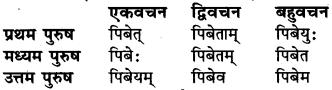 Vas Dhatu Lang Lakar RBSE Class 6