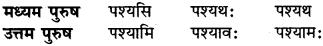 Tyaj Dhatu In Sanskrit RBSE Class 6