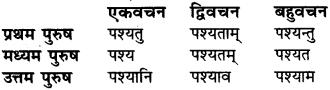 Lakar In Sanskrit Grammar RBSE Class 6