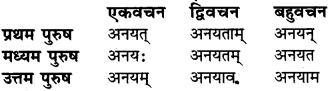 Sanskrit Mein Kitne Purush Hote Hain Class 6