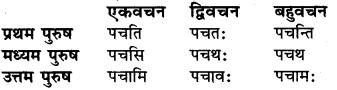 Lat Lakar Pratyay RBSE Class 6