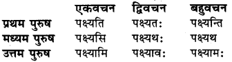 Sanskrit Vyakaran Dhatu Roop RBSE Class 6