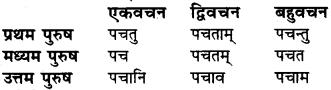 धातु रूपाणि संस्कृत में RBSE Class 6