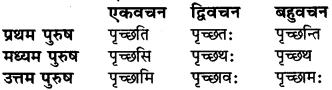 Sanskrit Class 6 Dhatu Roop RBSE