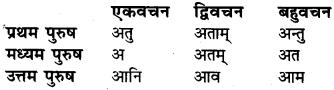 Dhatu Roop In Sanskrit Class 6 RBSE