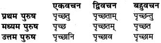 Sanskrit Dhatu Roop For Class 6 RBSE