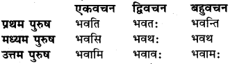 Sanskrit Lakar Pdf RBSE Class 6