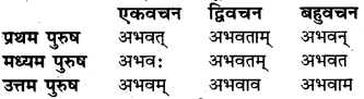 संस्कृत में धातु RBSE Class 6
