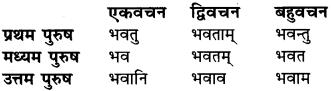 Dhatu Ke Prakar In Sanskrit RBSE Class 6