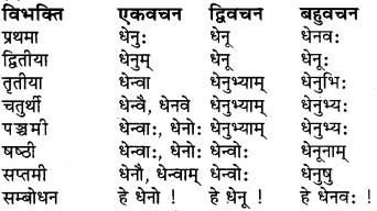 Shabdrupani In Sanskrit Class 6 RBSE