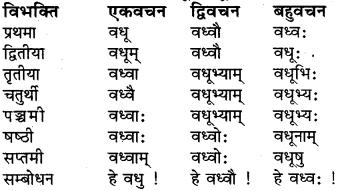 Shabd Roop In Sanskrit Class 6 RBSE