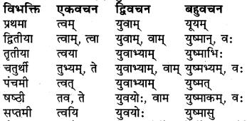 Shabd Roop Sanskrit Class 6 RBSE
