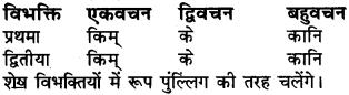 Sanskrit Shabd Roop Class 6 RBSE