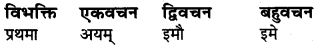 Ram Shabd In Sanskrit Class 6 RBSE