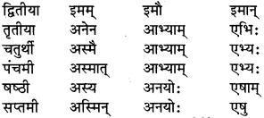 संस्कृत के शब्द रूप Class 6 RBSE