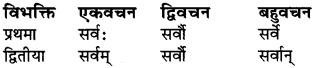 Shabd Rupani In Sanskrit Class 6 RBSE