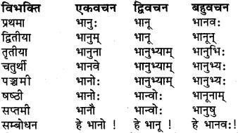 Ram Shabd Roop In Sanskrit RBSE
