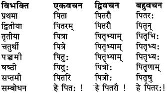 शब्द रूप संस्कृत में RBSE