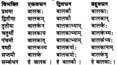 Bhanu Shabd Roop RBSE Class 7