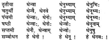 Class 7 Sanskrit Shabd Roop RBSE
