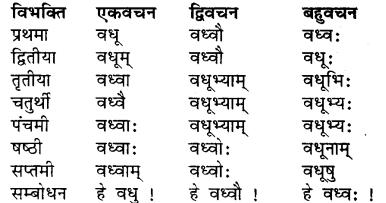 Bhanu Shabd Sanskrit RBSE Class 7