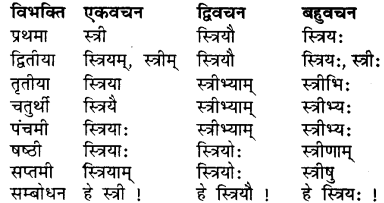 Sanskrit Shabd Roop RBSE Class 7