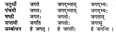 Ganesh Shabd Roop RBSE Class 7