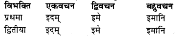 संस्कृत शब्द रूप Pdf RBSE Class 7
