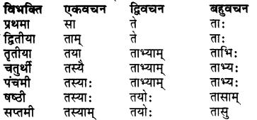 Bhanu Shabd Roop In Sanskrit RBSE Class 7