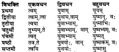 Bhanu Sanskrit Table RBSE Class 7