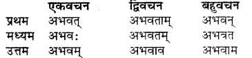 Sanskrit Bhanu Table RBSE Class 7