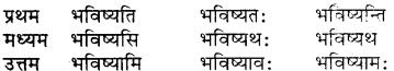 Bhanu Sanskrit Shabd Roop RBSE Class 7