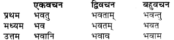Vyakaran Shabd Roop RBSE Class 7